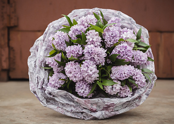 orhidei-teryayu-neobichnie-buketi-salon-tsvetov-moskva-tsvetov-zhulebino